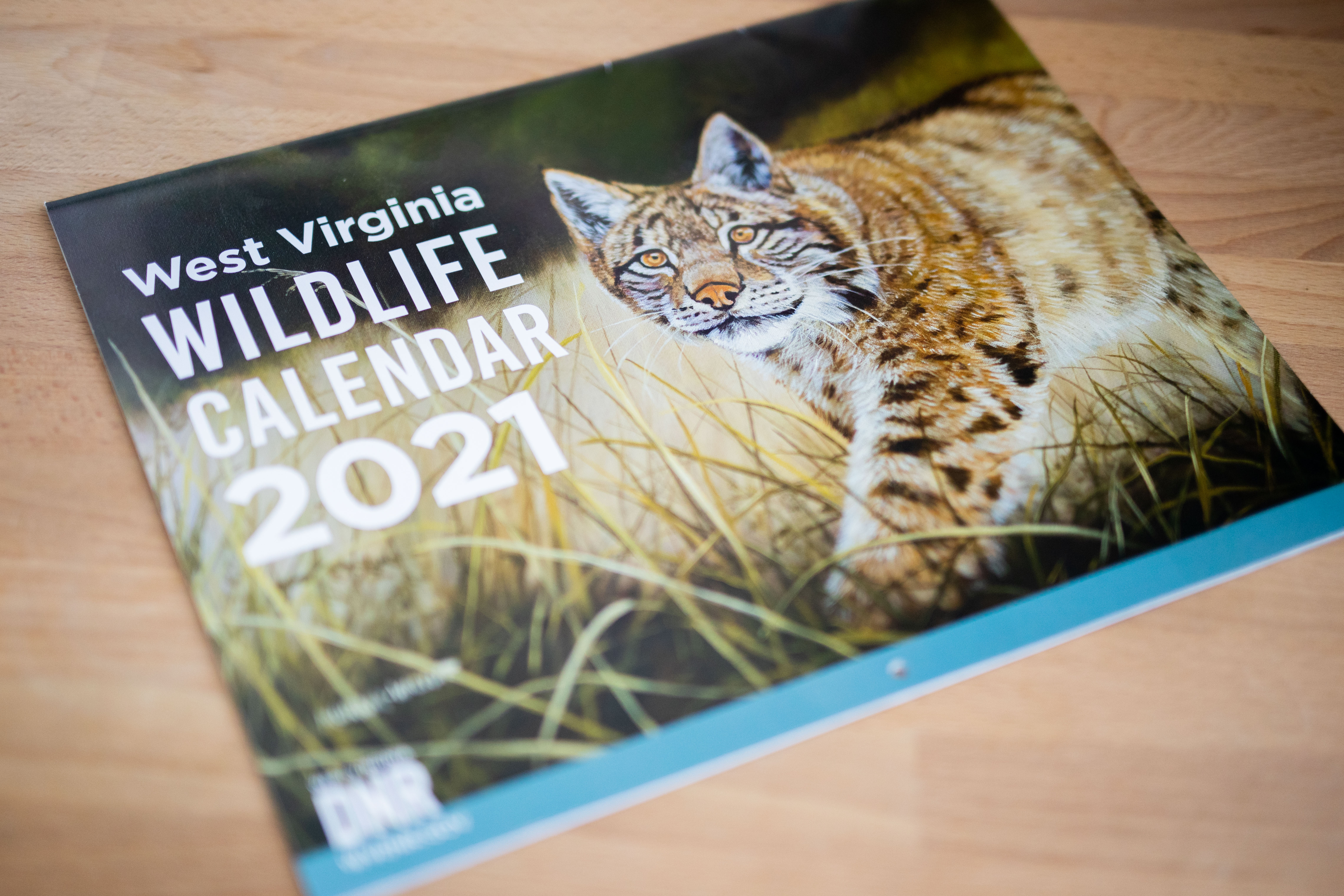 Hunter Fall 2022 Calendar.Wv Wildlife Calendar Makes Great Gift For Hunters And Anglers West Virginia Division Of Natural Resources